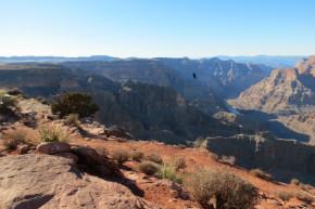 участники фестиваля в гранд каньоне